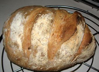 Brot fertig