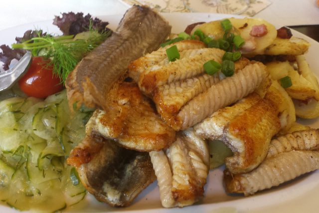 Jebratener Aal mit Bratkartoffeln und Jurkensalat