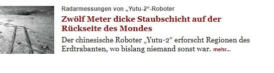 Tagesspiegel, Headline